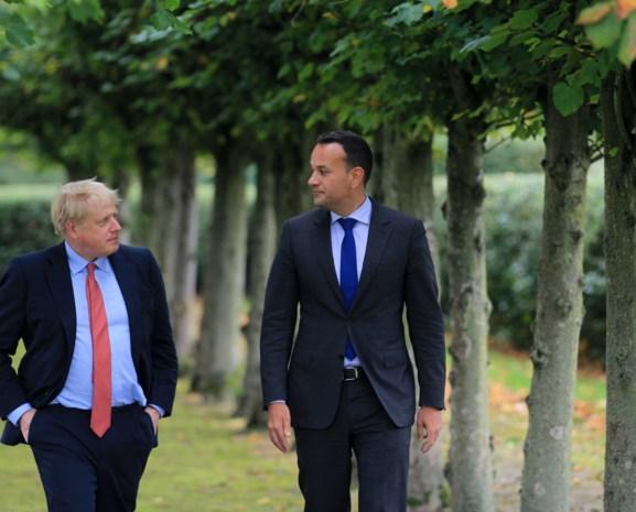 "Hoop voor Brexit? Ontmoeting tussen Britse en Ierse premier verloopt ""constructief"""