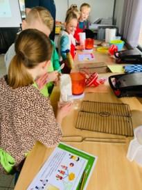 Leerlingen ontdekken techniek en wetenschappen op Tienerschool VOX Pelt