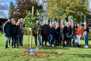 Campus Russelberg plant eerste Erasmusboom