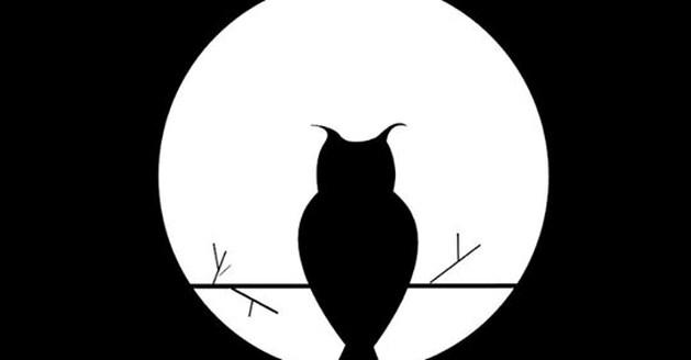 Nacht van de duisternis: Beringen dooft de lichten