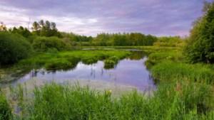 230.000 euro investeringen in het noord-Limburgse platteland