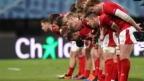 Engeland-Australië en Wales-Frankrijk in kwartfinales op WK rugby