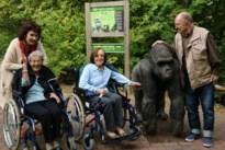 Seniorencampus 3 Eiken naar Gaia ZOO