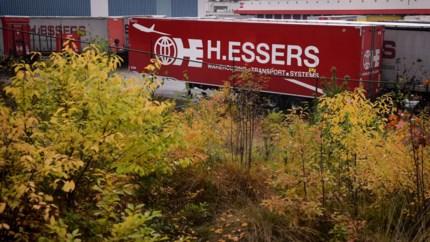 Natuurvereniging BOS+ gaat in beroep tegen nieuwe ontbossingsplannen Essers