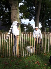 Wilde bijen in park van Beverlo