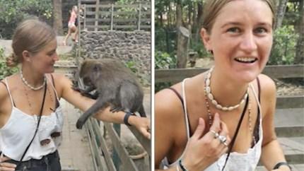 Toeriste wil foto nemen met aapje, maar het diertje was in iets helemaal anders geïnteresseerd