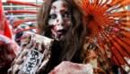 KAART. Het spoken kan beginnen: tal van Halloweentochten in Limburg