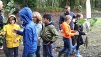 Lommel plant 7.000 bomen aan voor de Week van het Bos