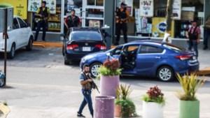 Mexicaans drugskartel neemt hele stad over