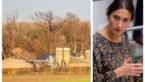 Minister Demir weigert vergunning voor megastallen in Borgloon