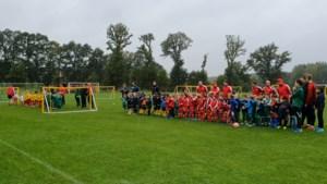 145 kleine sjotters spelen met de bal tijdens Dribbelfestival