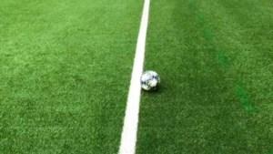 """Onze huisref Serge Gumienny na discussie rond Standard-goal: """"Quasi zeker dat bal niet over de lijn was"""""""