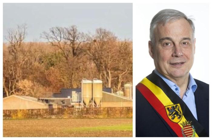 """Burgemeester Borgloon gaf wel gunstig advies voor megastallen: """"Als landbouw niet mag in landbouwgebied, waar dan wel?"""""""