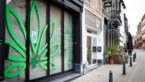 Burgemeester niet blij met cannabisshop vlak bij school