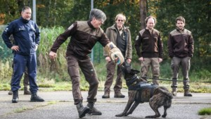 Politieschool geeft boswachters tips tegen loslopende, agressieve honden