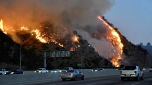 Villa's verwoest, celebs op de vlucht bij bosbranden in Los Angeles