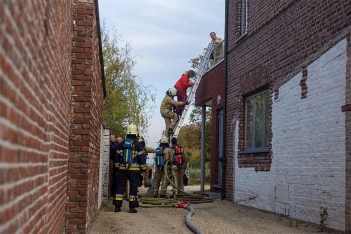 Brand in Hoeseltse flat: bewoonster vlucht naar terras