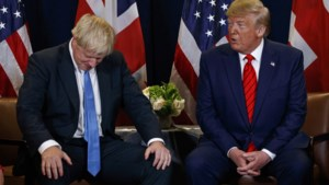 Trump mengt zich in Brexit
