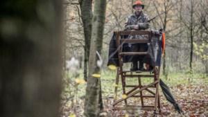 Jacht op everzwijn wordt met vijf extra drukjachten in natuurgebieden opgedreven