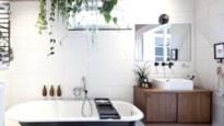 Groene keuken & planten boven het bad: het interieur van Line en Ben