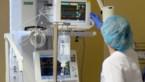 KU Leuven ontdekt hoe ziekenhuisbacterie hartklep infecteert