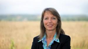 """""""Ambitieuze plannen van Jumbo zorgen voor een prijzenoorlog in de landbouwsector"""""""