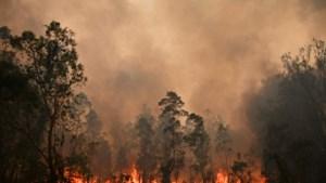 """Australië bereidt zich voor op """"een van de gevaarlijkste dagen ooit"""""""