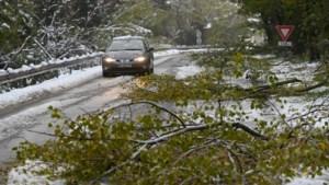 OPROEP. 300.000 gezinnen zonder stroom en al 1 dode: hevige sneeuwval in Frankrijk