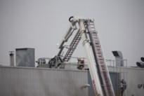 Brand in Genks bedrijf: veertig mensen geëvacueerd