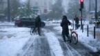 Nog altijd 170.000 gezinnen zonder elektriciteit na hevige sneeuwval