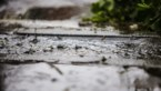 Code geel: KMI waarschuwt voor veel neerslag, en zelfs gladheid door sneeuw