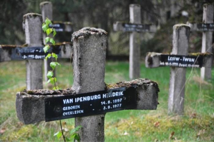 HERBELEEF. Gemeenteraad Beringen keurt natuurbegraafplaats goed
