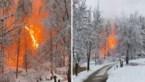 Spectaculaire beelden: elektriciteitsleiding vliegt in brand in besneeuwd bos