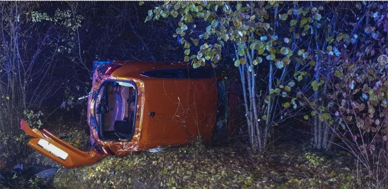 Auto crasht in struiken langs de weg (Tongeren) - Het Belang van Limburg