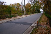 HERBELEEF. Gemeenteraad Diepenbeek: experts buigen zich over paddentunnels