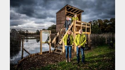 Nieuw platform biedt inkijk in natuurgebied Ballewijers
