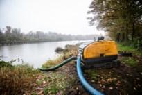 Moerasvijver wordt drooggelegd om boomkikker te lokken