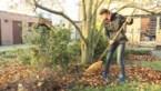 Hoe uw tuin klaarmaken voor de winter