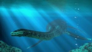 Wervel van 67 miljoen jaar oude dinosaurus gevonden in Nederlands Limburg