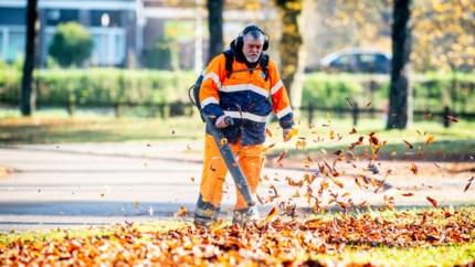 Gemeenten laten bladeren zo veel mogelijk liggen