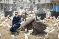 Diervriendelijke kippenstal krijgt geen vergunning