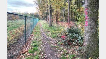 Woonproject in bos achter begraafplaats