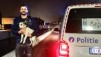 """Agenten halen """"acrobatische toeren"""" uit om hondje uit het water te redden"""