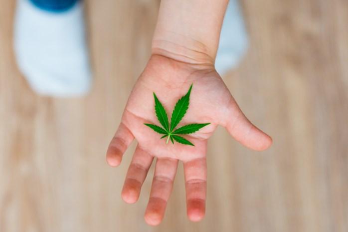155 cannabisplanten in kinderkamer: 18 maanden cel