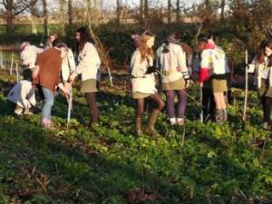 Scouts helpen Natuurpunt bomen en struiken planten