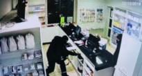 Overvallers plunderen kassa van apotheek in Piringen