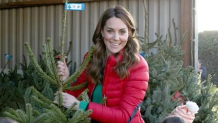 Koop je nu beter een echte of een valse kerstboom?