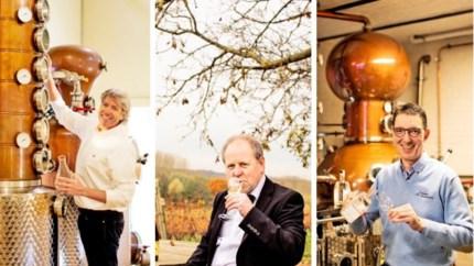 Drie Limburgse drankgoeroes geven tips voor de feestdagen