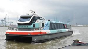 Zeven gewonden bij botsing Waterbus in Antwerpen