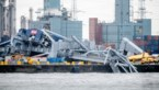 Containerschip slaat op hol en botst tegen kraan: enorme ravage in Antwerpse haven